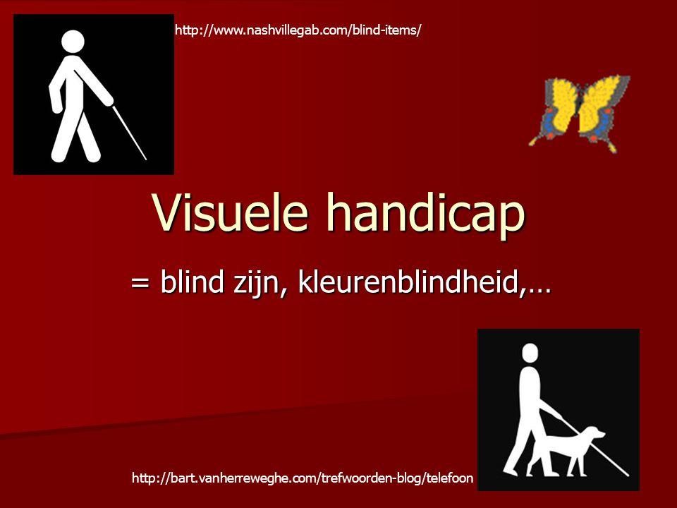 Visuele handicap = blind zijn, kleurenblindheid,… http://www.nashvillegab.com/blind-items/ http://bart.vanherreweghe.com/trefwoorden-blog/telefoon