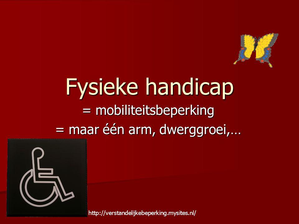 Fysieke handicap = mobiliteitsbeperking = maar één arm, dwerggroei,… http://verstandelijkebeperking.mysites.nl/