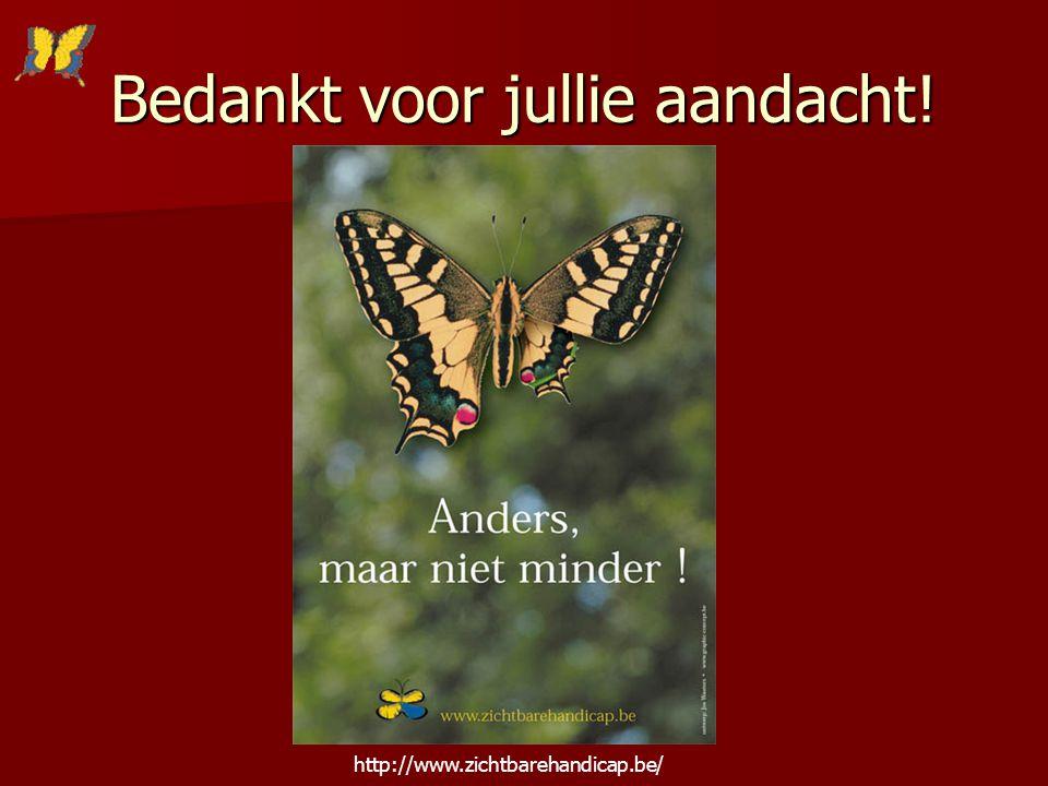 Bedankt voor jullie aandacht! http://www.zichtbarehandicap.be/