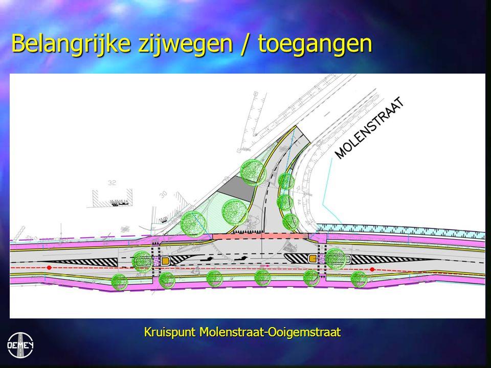 Belangrijke zijwegen / toegangen Kruispunt Molenstraat-Ooigemstraat