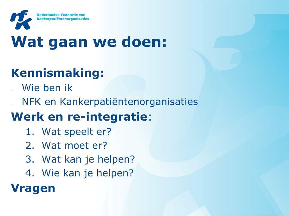Wat gaan we doen: Kennismaking: o Wie ben ik o NFK en Kankerpatiëntenorganisaties Werk en re-integratie: 1.Wat speelt er.