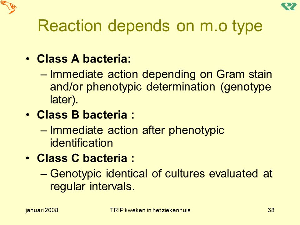 januari 2008TRIP kweken in het ziekenhuis38 Reaction depends on m.o type Class A bacteria: –Immediate action depending on Gram stain and/or phenotypic determination (genotype later).