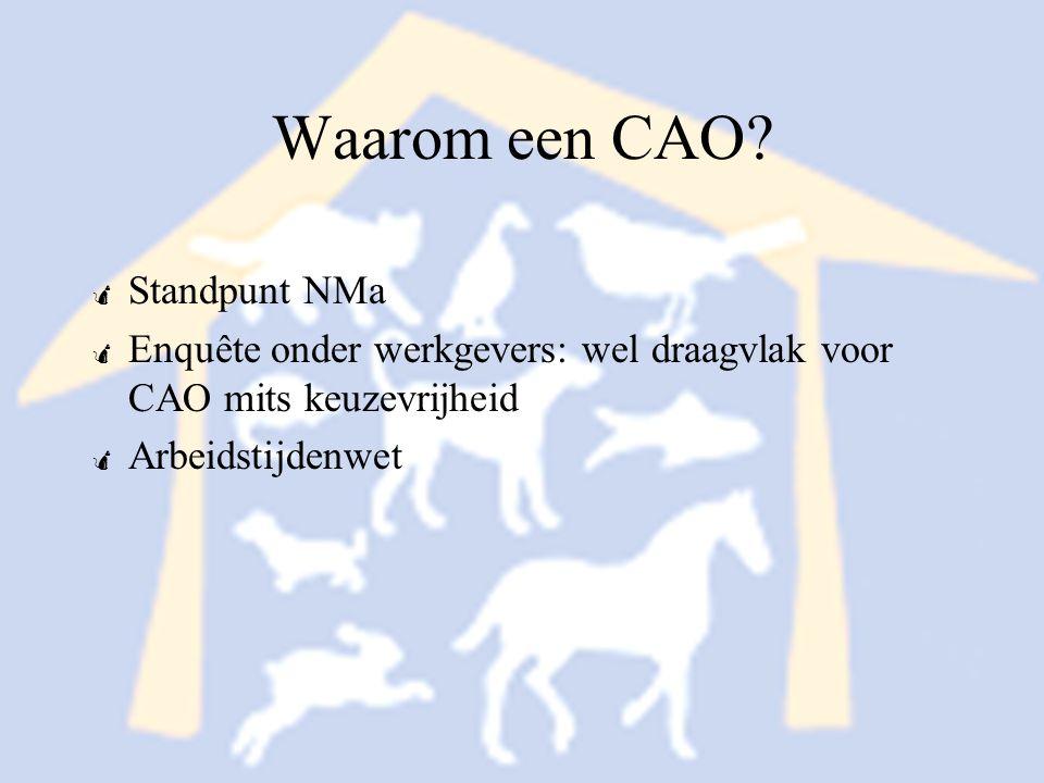 Uitgangspunten CAO voor BPW  Formaliseren huidige situatie  Belangrijkste onderwerp: Arbeidstijdenwet  Kostenstijging eerste CAO beperkt houden tot ongeveer 3%  CAO moet wervend zijn voor BPW