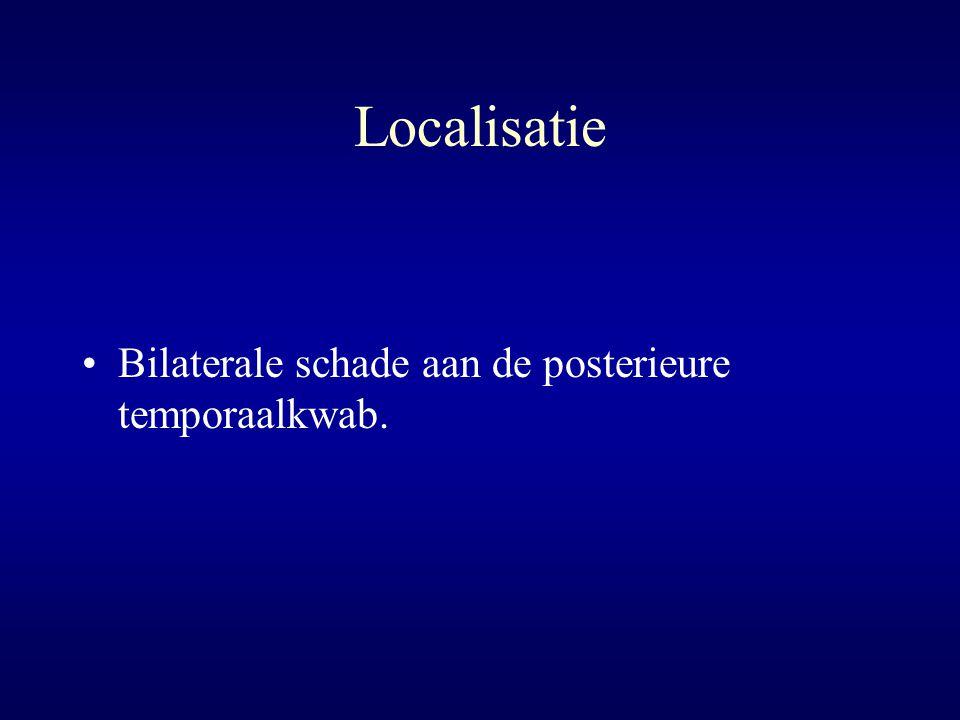 Localisatie Bilaterale schade aan de posterieure temporaalkwab.