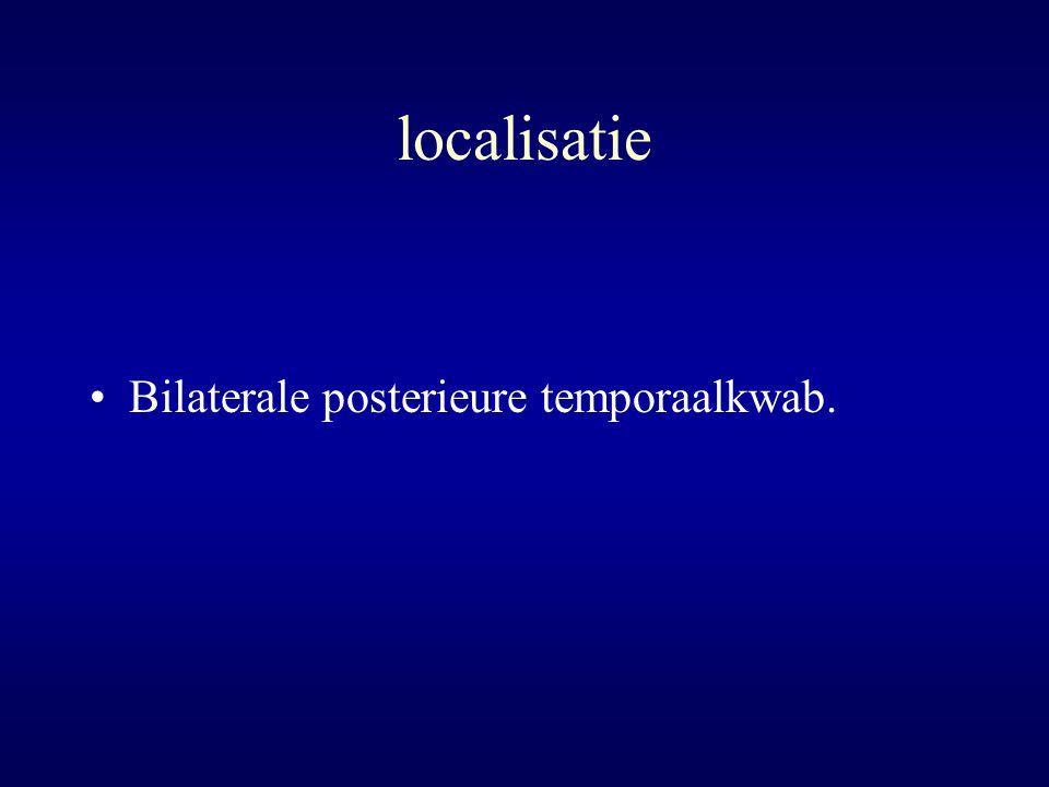 localisatie Bilaterale posterieure temporaalkwab.