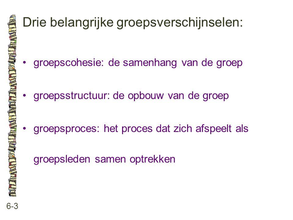 Drie belangrijke groepsverschijnselen: 6-3 groepscohesie: de samenhang van de groep groepsstructuur: de opbouw van de groep groepsproces: het proces dat zich afspeelt als groepsleden samen optrekken