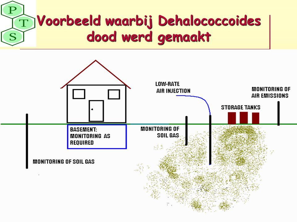 Voorbeeld waarbij Dehalococcoides dood werd gemaakt