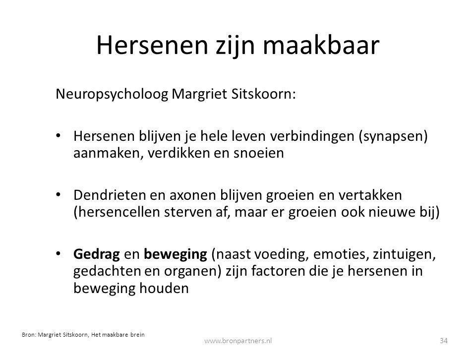 Hersenen zijn maakbaar Neuropsycholoog Margriet Sitskoorn: Hersenen blijven je hele leven verbindingen (synapsen) aanmaken, verdikken en snoeien Dendr