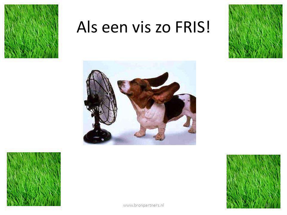 Als een vis zo FRIS! 82www.bronpartners.nl