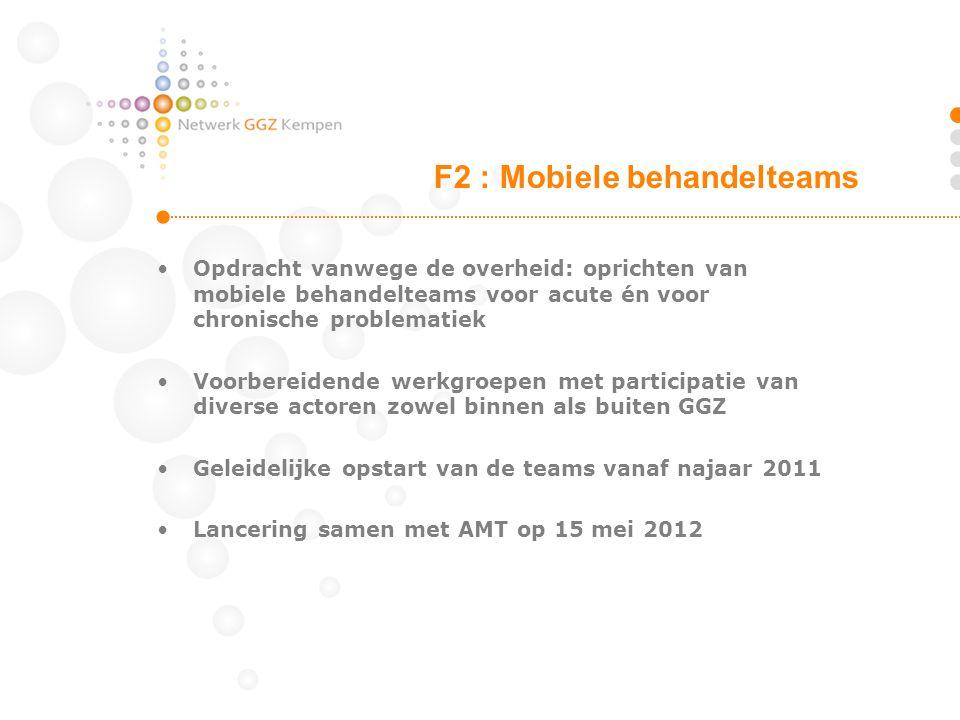 Opdracht vanwege de overheid: oprichten van mobiele behandelteams voor acute én voor chronische problematiek Voorbereidende werkgroepen met participat