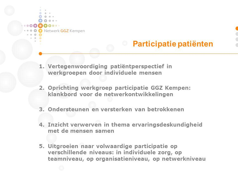 1.Vertegenwoordiging patiëntperspectief in werkgroepen door individuele mensen 2.Oprichting werkgroep participatie GGZ Kempen: klankbord voor de netwe
