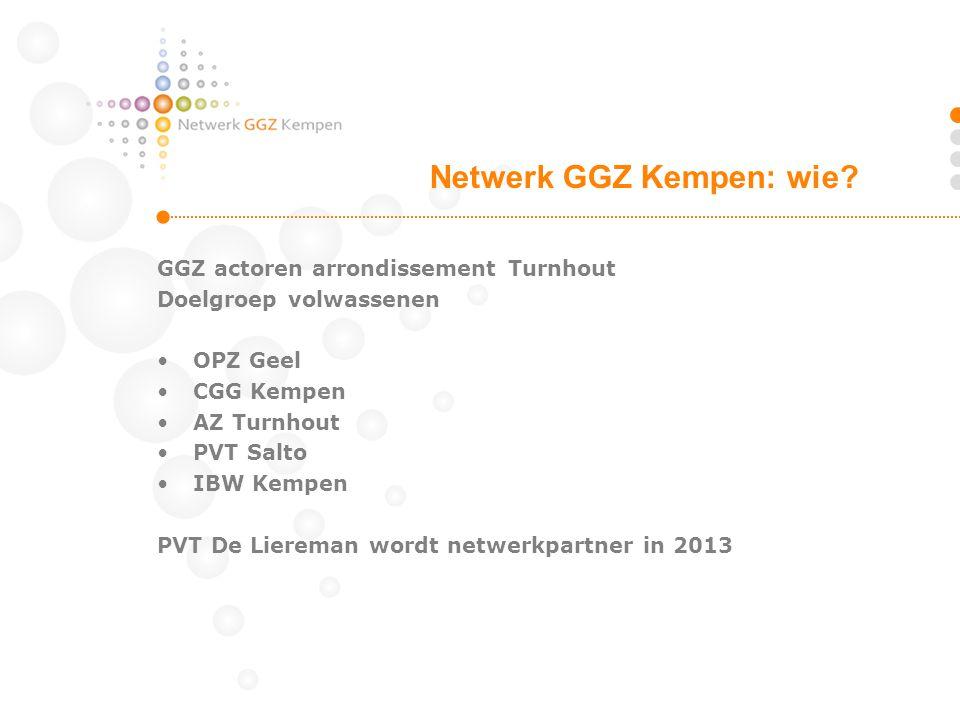 GGZ actoren arrondissement Turnhout Doelgroep volwassenen OPZ Geel CGG Kempen AZ Turnhout PVT Salto IBW Kempen PVT De Liereman wordt netwerkpartner in