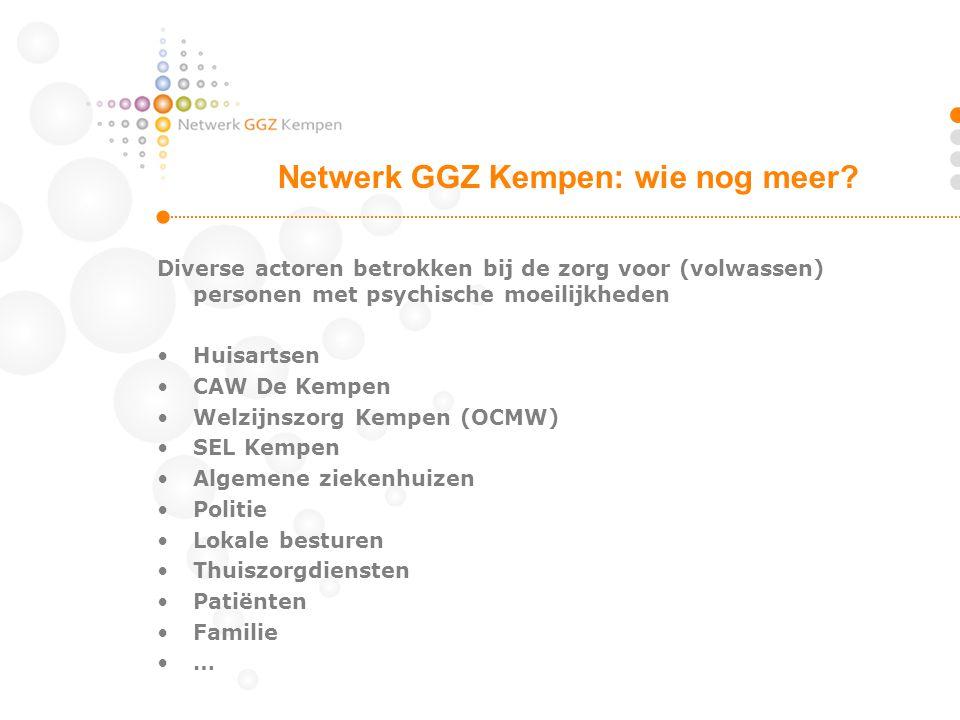Coördinatie van het netwerk door de GGZ organisaties (primaire partners) Intensieve samenwerking met diverse andere actoren (secundaire partners) bij de ontwikkeling en de realisatie van de verschillende zorgfuncties Participatie van patiënten en familieleden Netwerkcoördinator als verbindende figuur Netwerk GGZ Kempen: structuur