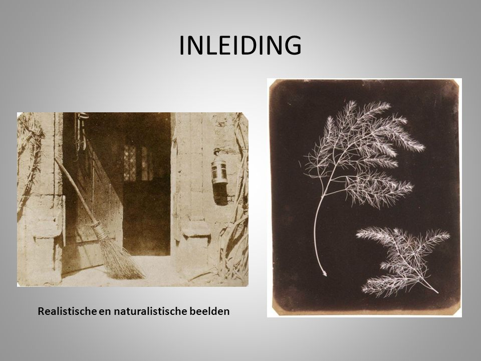 INLEIDING Realistische en naturalistische beelden