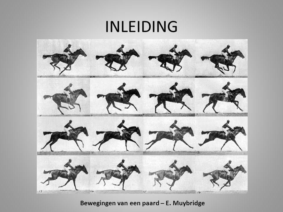 INLEIDING Bewegingen van een paard – E. Muybridge