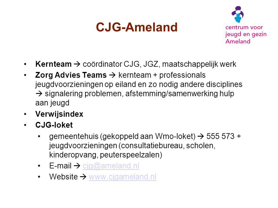 CJG-Ameland Kernteam  coördinator CJG, JGZ, maatschappelijk werk Zorg Advies Teams  kernteam + professionals jeugdvoorzieningen op eiland en zo nodi
