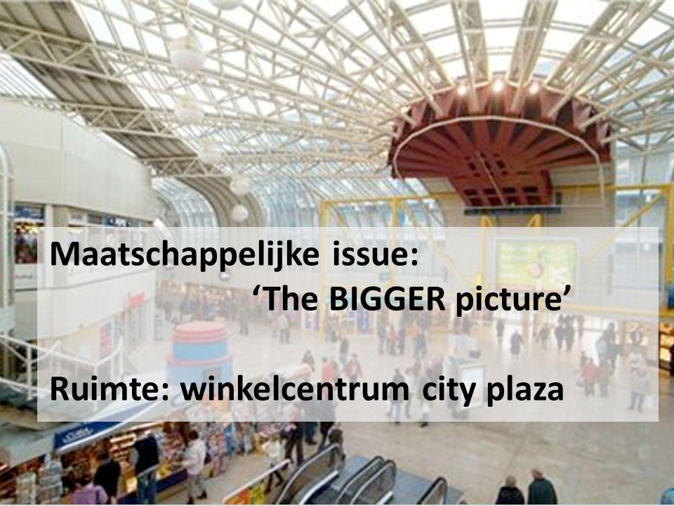 Maatschappelijke issue: 'The BIGGER picture' Ruimte: winkelcentrum city plaza