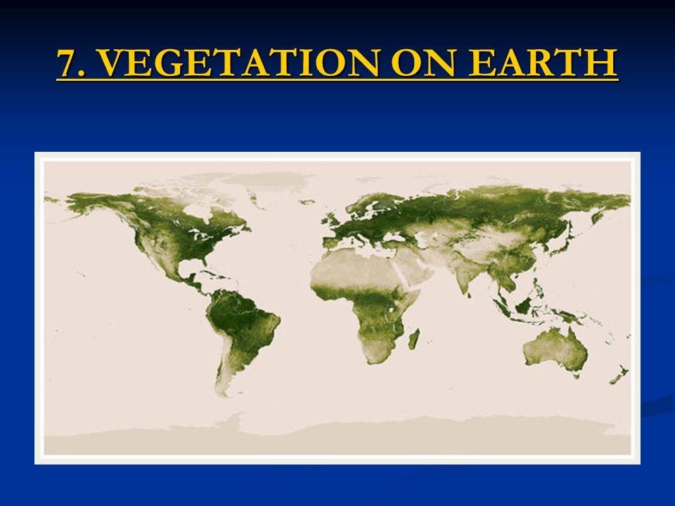 7. VEGETATION ON EARTH 7. VEGETATION ON EARTH