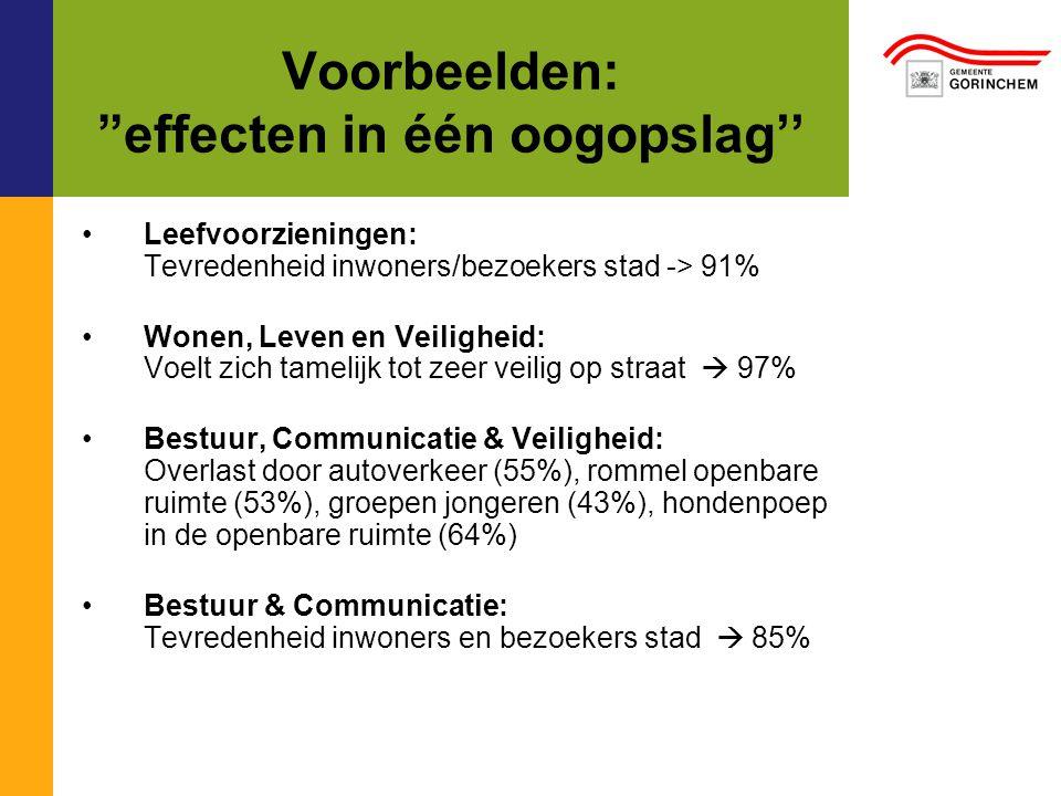 Voorbeelden: effecten in één oogopslag'' Leefvoorzieningen: Tevredenheid inwoners/bezoekers stad -> 91% Wonen, Leven en Veiligheid: Voelt zich tamelijk tot zeer veilig op straat  97% Bestuur, Communicatie & Veiligheid: Overlast door autoverkeer (55%), rommel openbare ruimte (53%), groepen jongeren (43%), hondenpoep in de openbare ruimte (64%) Bestuur & Communicatie: Tevredenheid inwoners en bezoekers stad  85%