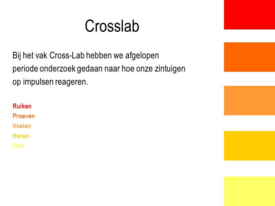 Crosslab Bij het vak Cross-Lab hebben we afgelopen periode onderzoek gedaan naar hoe onze zintuigen op impulsen reageren. Ruiken Proeven Voelen Horen
