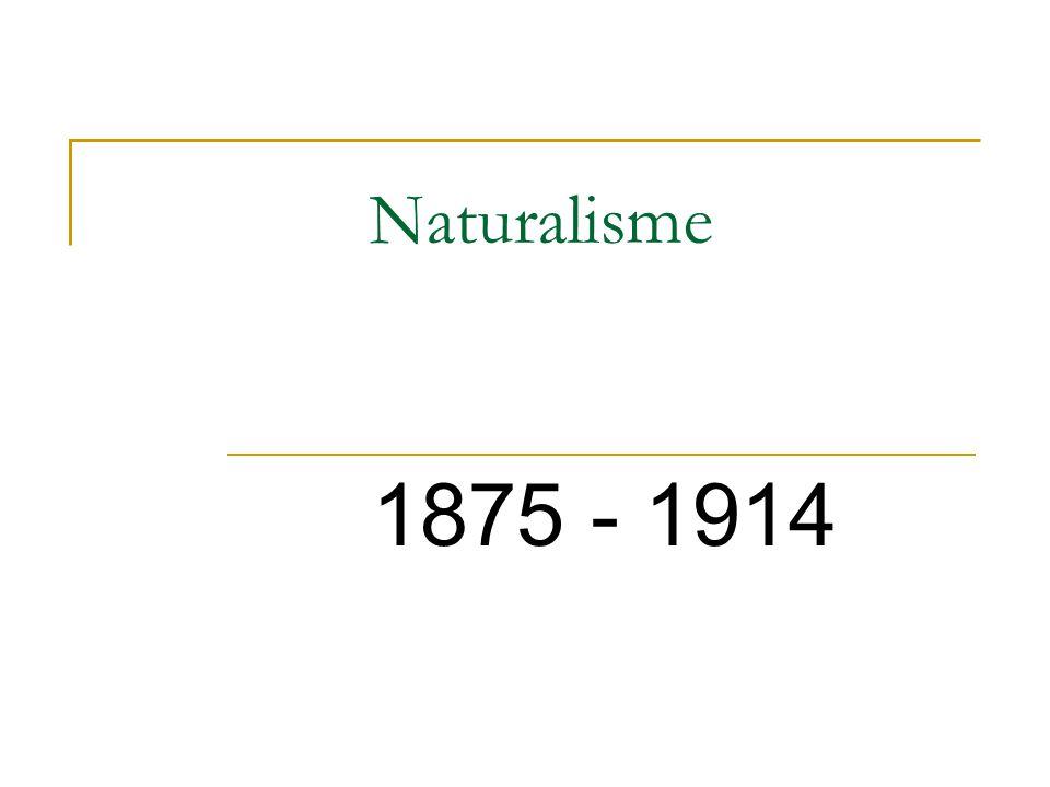 Naturalisme Niet alleen laten zien, ook verklaren.