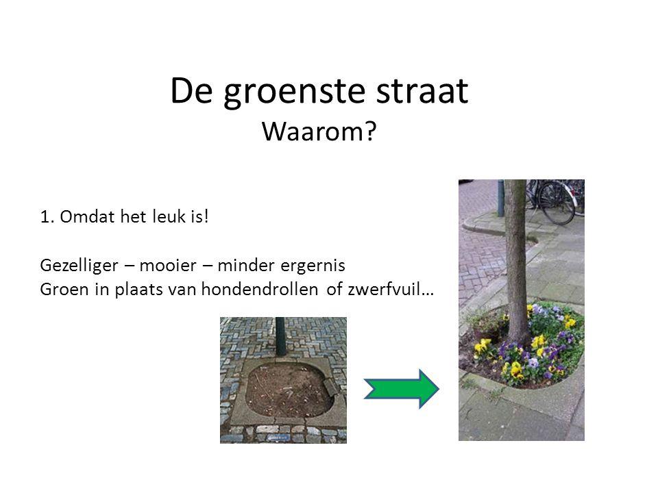 De groenste straat Waarom? 1. Omdat het leuk is! Gezelliger – mooier – minder ergernis Groen in plaats van hondendrollen of zwerfvuil…