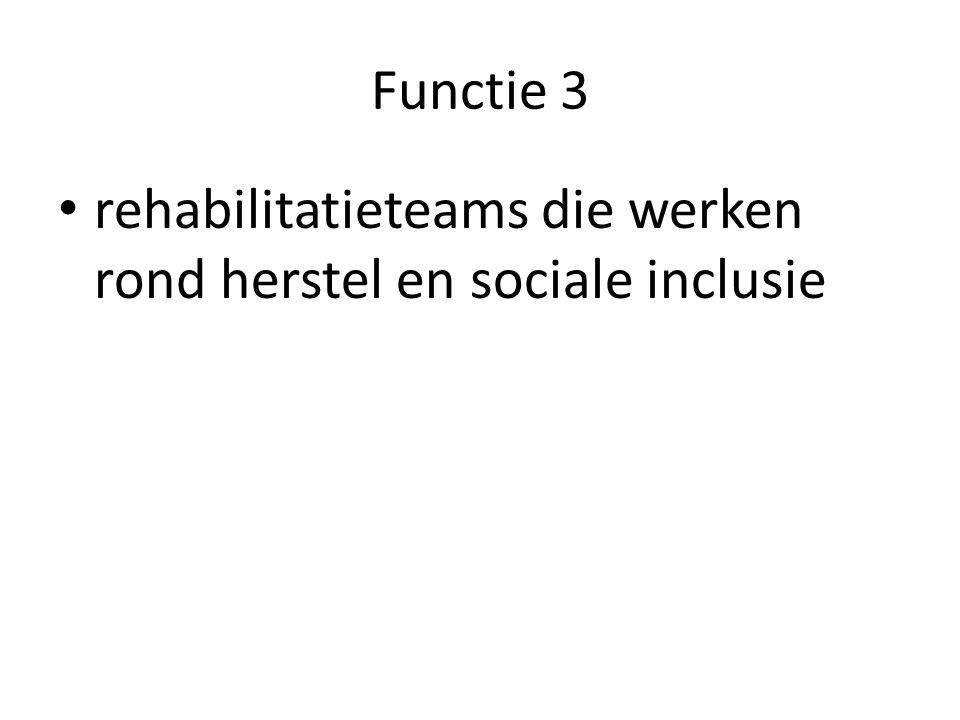 Functie 3 rehabilitatieteams die werken rond herstel en sociale inclusie