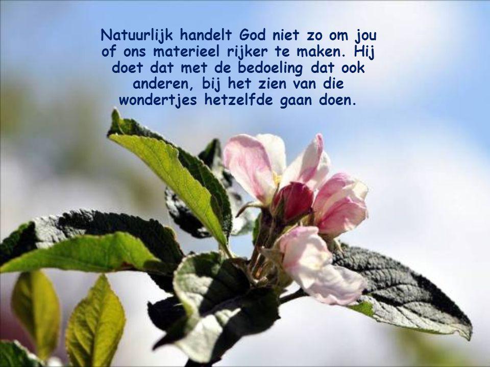 Zoek je zekerheid niet langer in de goederen van deze aarde, maar vertrouw op God! Daaruit blijkt jouw geloof in Hem. En je geloof zal bevestigd worde