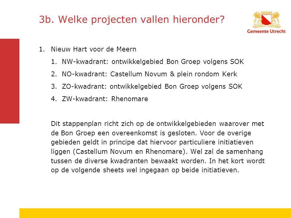 3b.Welke projecten vallen hieronder.
