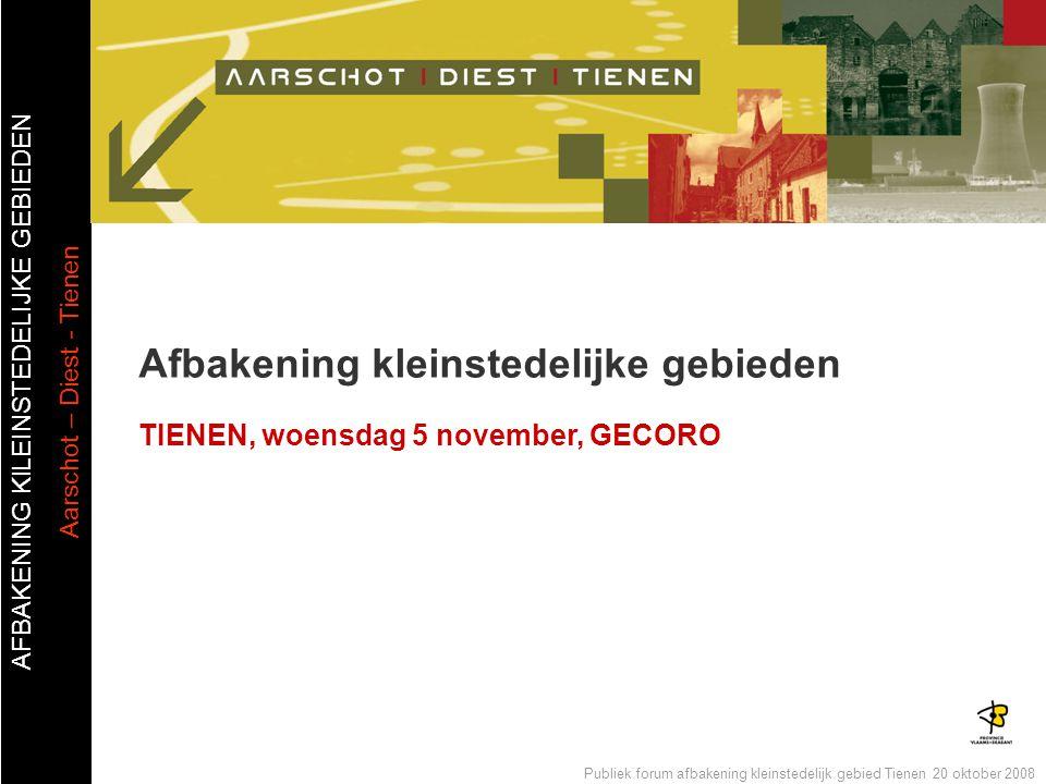 AFBAKENING KlLEINSTEDELIJKE GEBIEDEN Aarschot – Diest - Tienen Publiek forum afbakening kleinstedelijk gebied Tienen 20 oktober 2008 Afbakening kleins