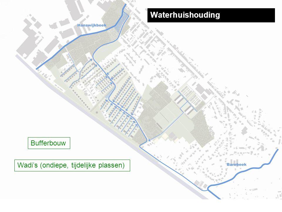 Waterhuishouding Bufferbouw Wadi's (ondiepe, tijdelijke plassen)