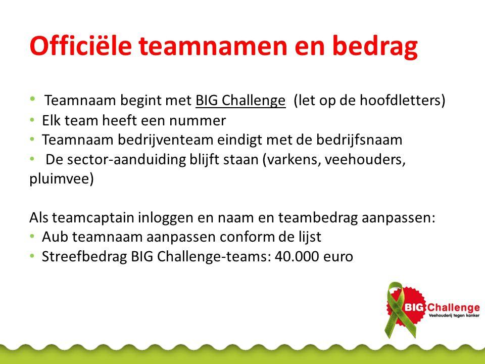 Officiële teamnamen en bedrag Teamnaam begint met BIG Challenge (let op de hoofdletters) Elk team heeft een nummer Teamnaam bedrijventeam eindigt met