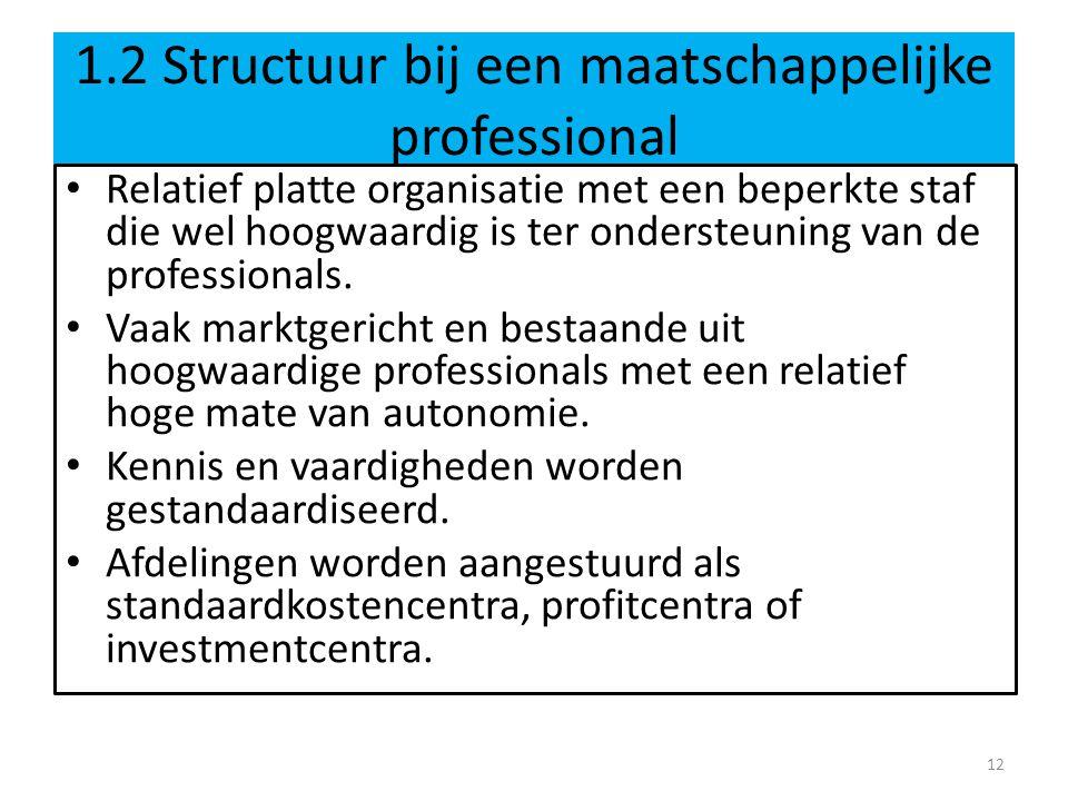 1.2 Structuur bij een maatschappelijke professional Relatief platte organisatie met een beperkte staf die wel hoogwaardig is ter ondersteuning van de