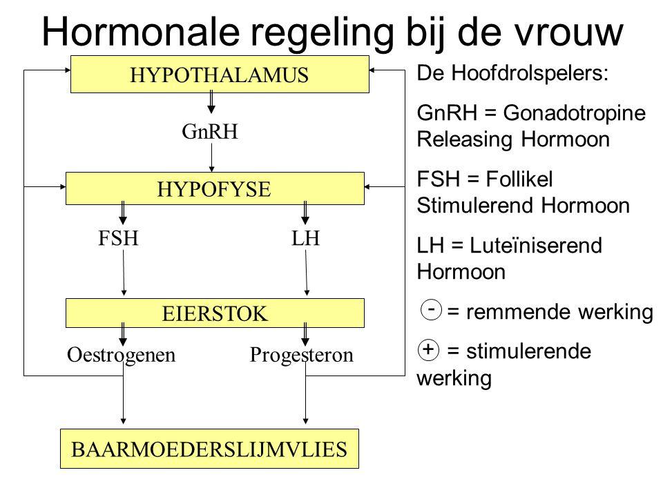 HYPOFYSE EIERSTOK BAARMOEDERSLIJMVLIES FSH HYPOTHALAMUS GnRH LH OestrogenenProgesteron De Hoofdrolspelers: GnRH = Gonadotropine Releasing Hormoon FSH