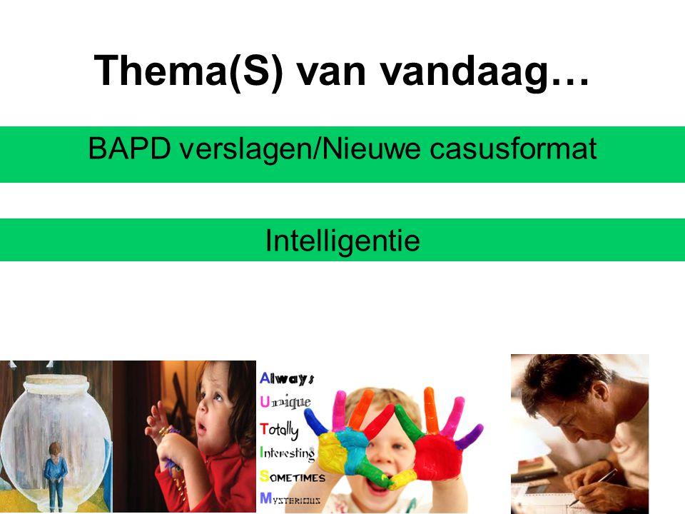 Thema(S) van vandaag… BAPD verslagen/Nieuwe casusformat Intelligentie
