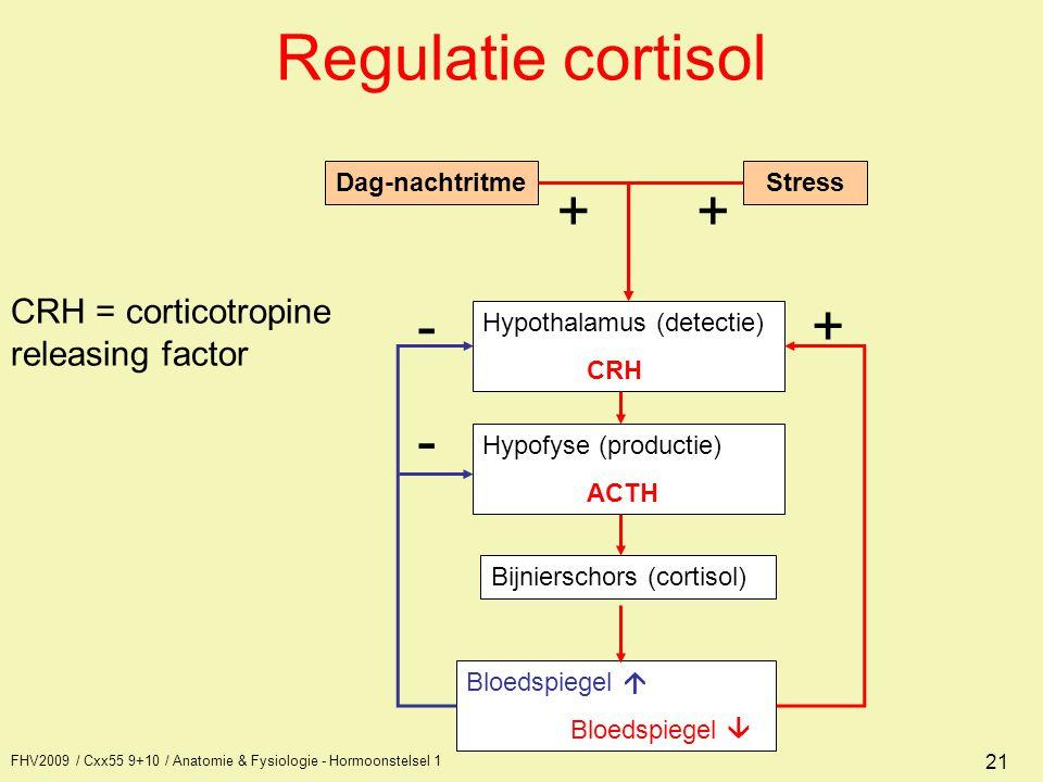 FHV2009 / Cxx55 9+10 / Anatomie & Fysiologie - Hormoonstelsel 1 21 Hypothalamus (detectie) CRH Hypofyse (productie) ACTH Bloedspiegel  Bloedspiegel 