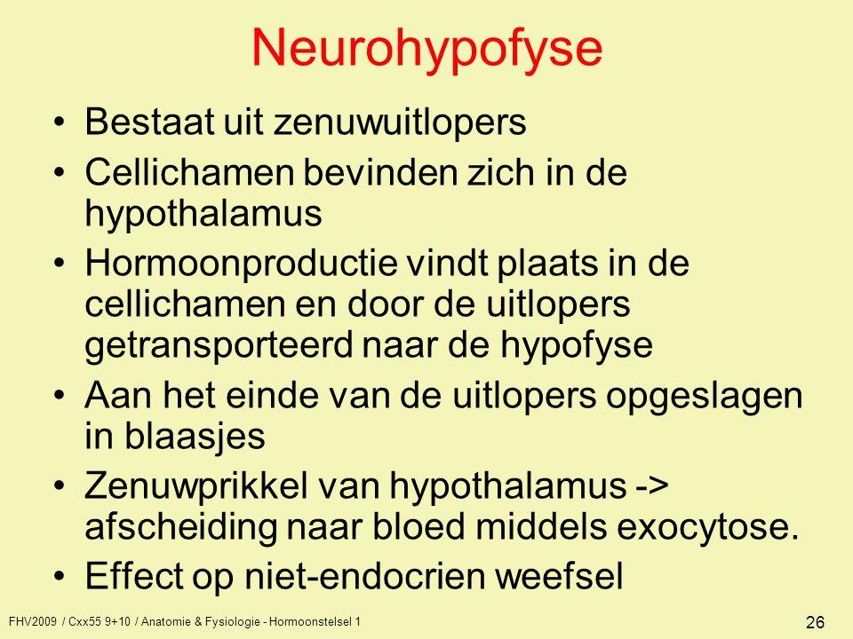 FHV2009 / Cxx55 9+10 / Anatomie & Fysiologie - Hormoonstelsel 1 26 Neurohypofyse Bestaat uit zenuwuitlopers Cellichamen bevinden zich in de hypothalam