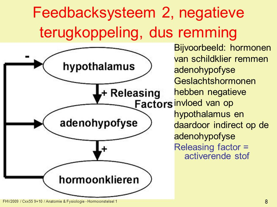 FHV2009 / Cxx55 9+10 / Anatomie & Fysiologie - Hormoonstelsel 1 9 Ligging hormoonklieren /Epifyse Glandula thyroïdea/ parathyroïdea / /Hypofyse /Thymus Ovaria/ Pancreas/ Glandula suprarenalis/ /Uterus /Ren /Gaster /Cor /Trachea Cutis/ Pulmonalis/ Hepar/ Colic/
