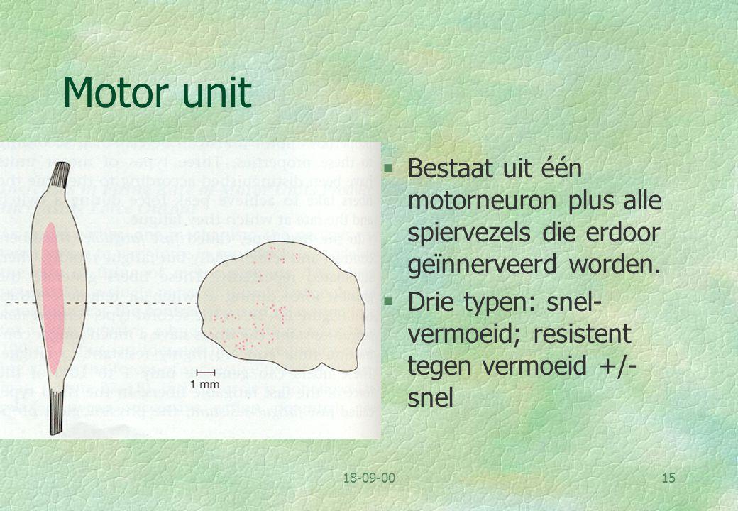 18-09-0016 Motor- neuron: dendriet- boom en longitu- dinale organisa- tie van kernen in ruggen- merg