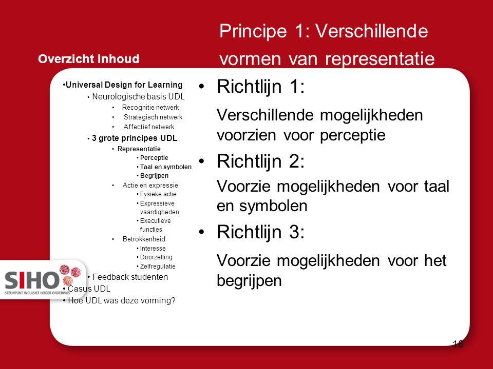 Principe 1: Verschillende vormen van representatie Richtlijn 1: Verschillende mogelijkheden voorzien voor perceptie Richtlijn 2: Voorzie mogelijkheden
