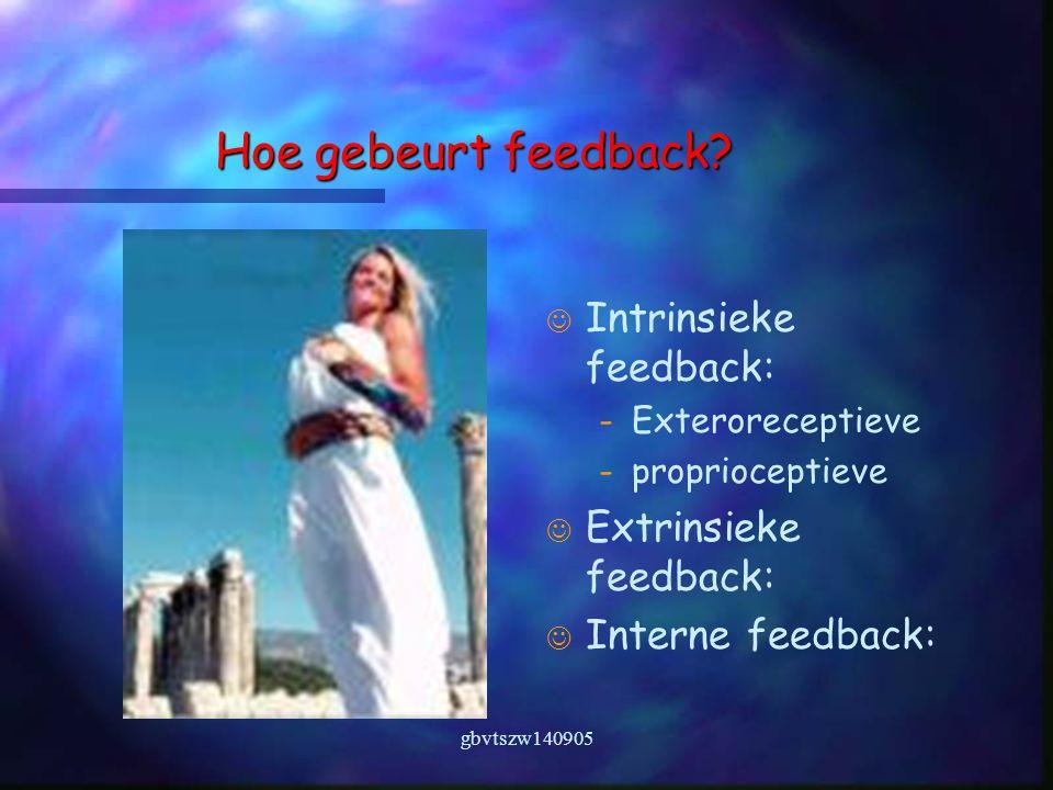 gbvtszw140905 Hoe gebeurt feedback.