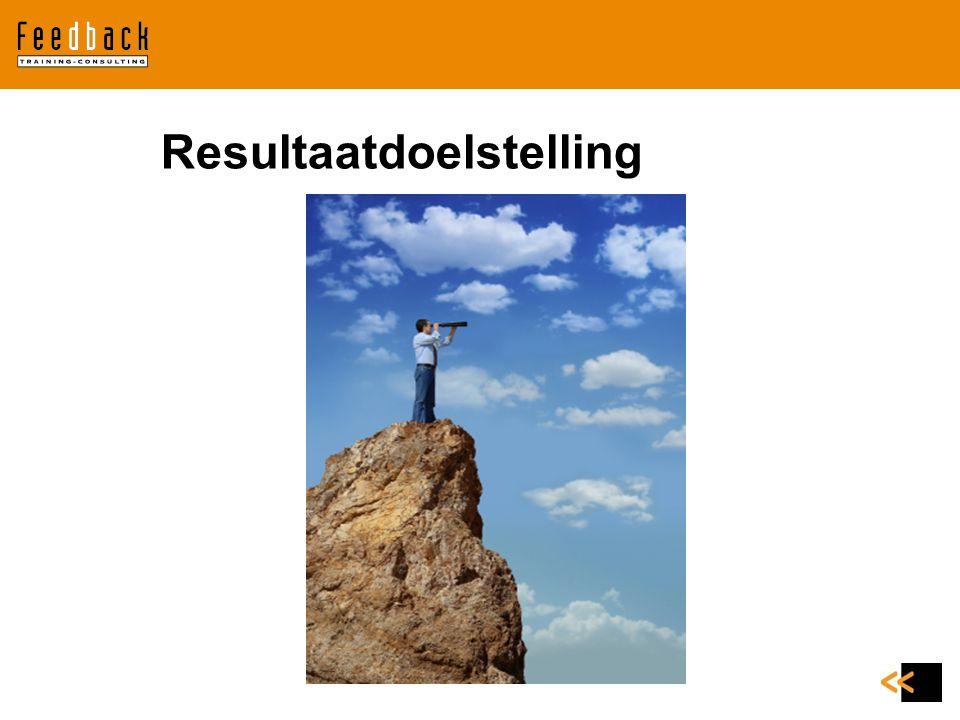 Resultaat en leervoorkeuren (bron Manon Ruijters) Op welke manier leert en ontwikkelt iemand zich graag.