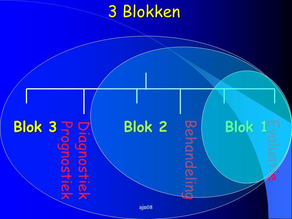 ajn08 Diagnostiek Prognostiek Behandeling Evaluatie Blok 3 Blok 2 Blok 1 3 Blokken