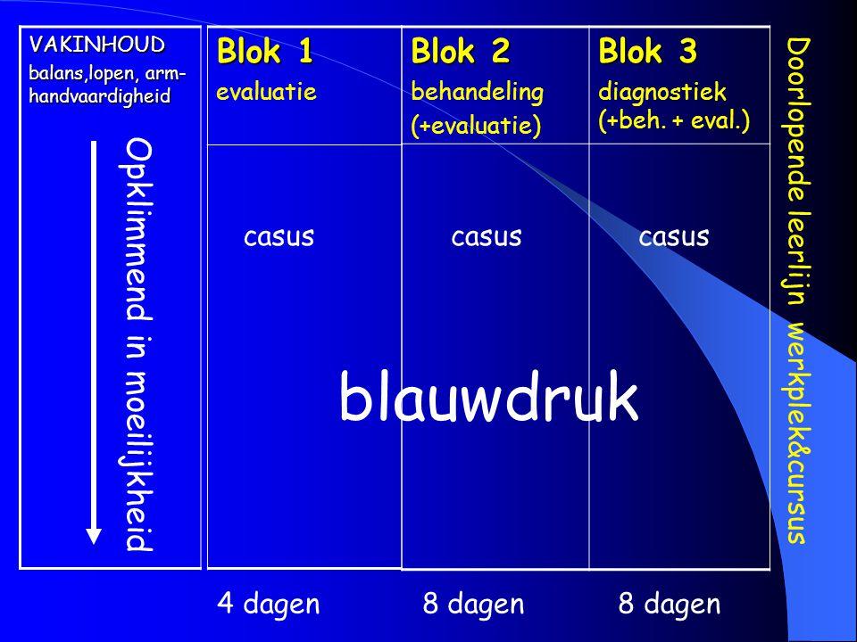 VAKINHOUD balans,lopen, arm- handvaardigheid Opklimmend in moeilijkheid Blok 1 evaluatie Blok 2 behandeling (+evaluatie) Blok 3 diagnostiek (+beh. + e