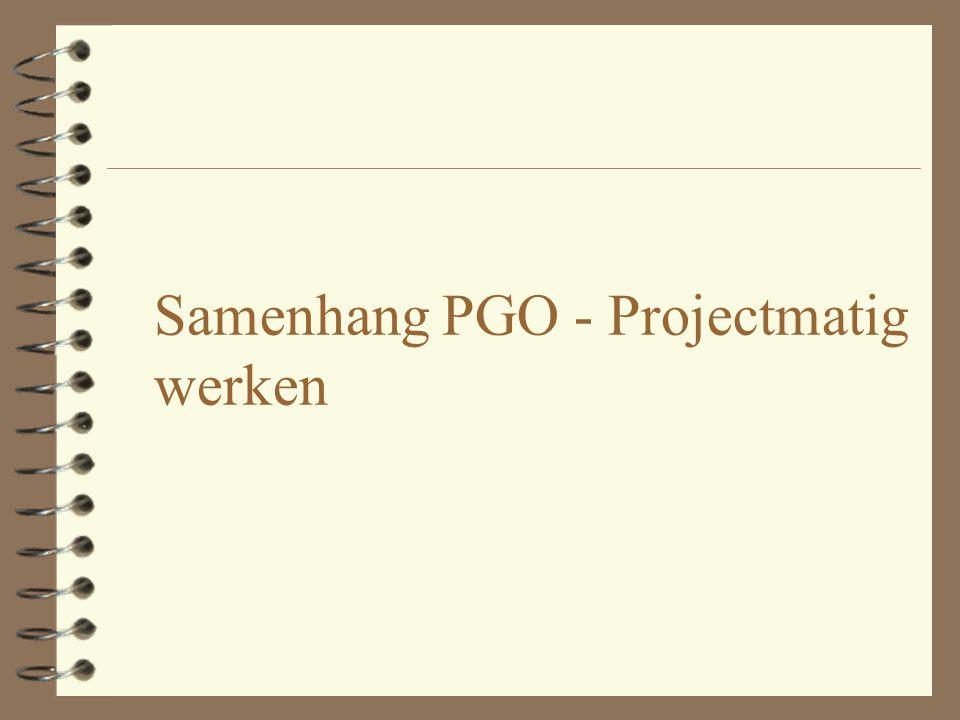 Plaats van de Project Manager binnen het bedrijf