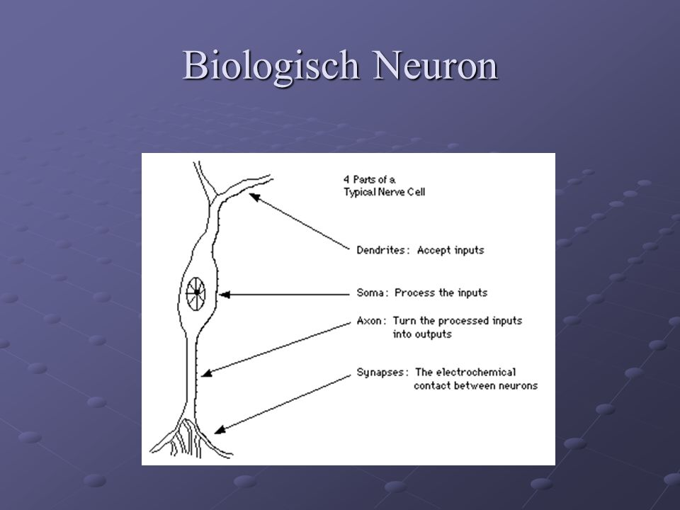 Artificieel Neuron