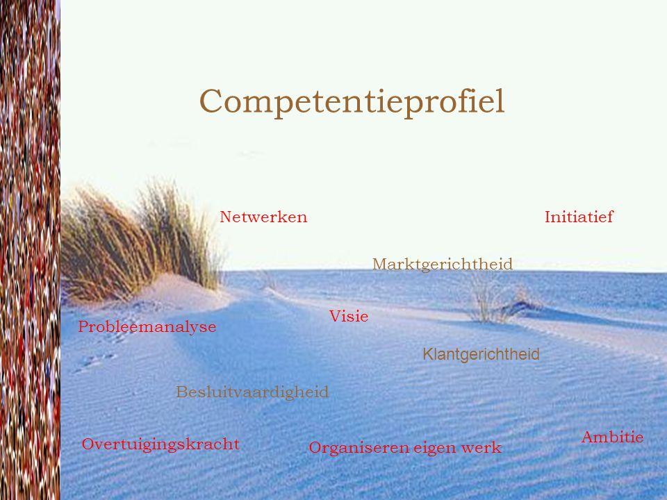 Competentieprofiel Besluitvaardigheid Marktgerichtheid Klantgerichtheid Netwerken Visie Probleemanalyse Overtuigingskracht Ambitie Organiseren eigen werk Initiatief