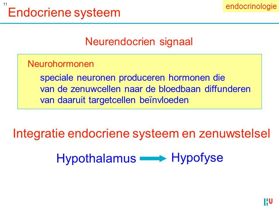 11 Endocriene systeem Neurohormonen speciale neuronen produceren hormonen die van de zenuwcellen naar de bloedbaan diffunderen van daaruit targetcelle