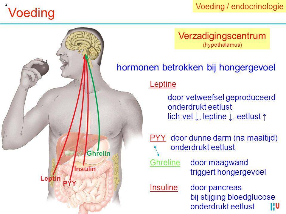 2 Voeding Leptin PYY Insulin Ghrelin Verzadigingscentrum (hypothalamus) hormonen betrokken bij hongergevoel Leptine door vetweefsel geproduceerd onder