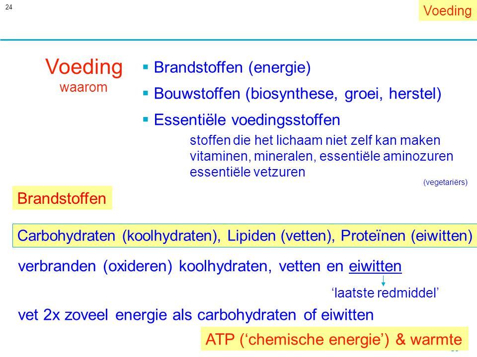 24 Voeding waarom  Bouwstoffen (biosynthese, groei, herstel)  Brandstoffen (energie)  Essentiële voedingsstoffen stoffen die het lichaam niet zelf